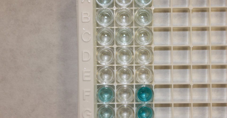 Interleukin-6 IL-6 IL6 ELISA Human Test Kit
